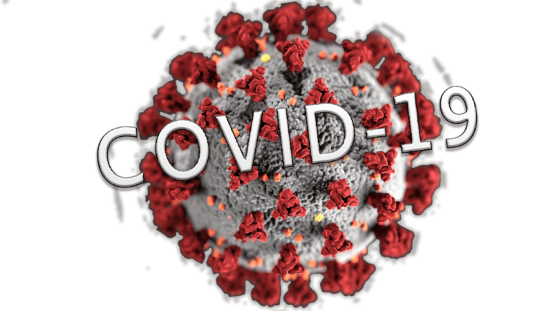 Virus-Covid19